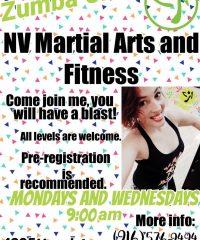 NV Martial Arts & Fitness Academy